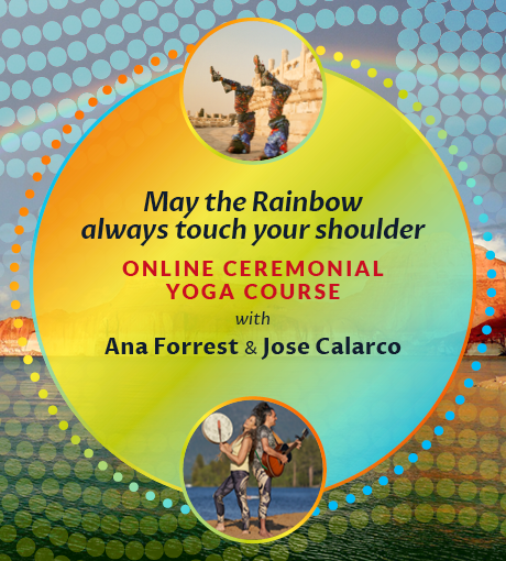 Forrest Yoga Rainbow Trilogy